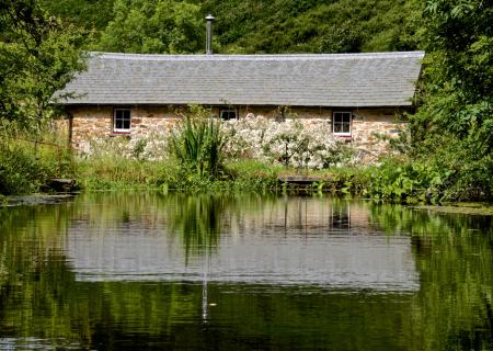 Cottage from mill pond.