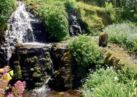 Waterfall in the cottage garden.